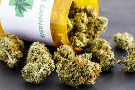 Buy Weed Online Wholesale and Avoid Being Cheated!