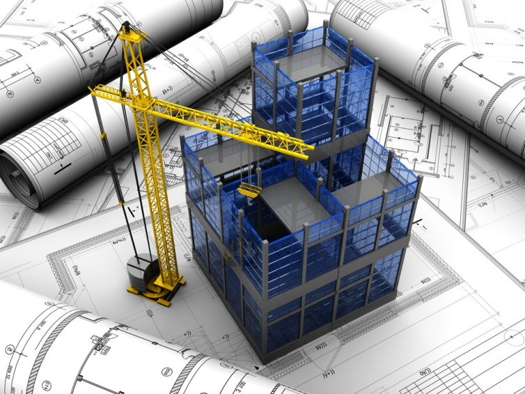 Pre Construction Termitage – Tasks to Consider